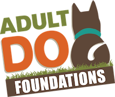 adult dog foundations