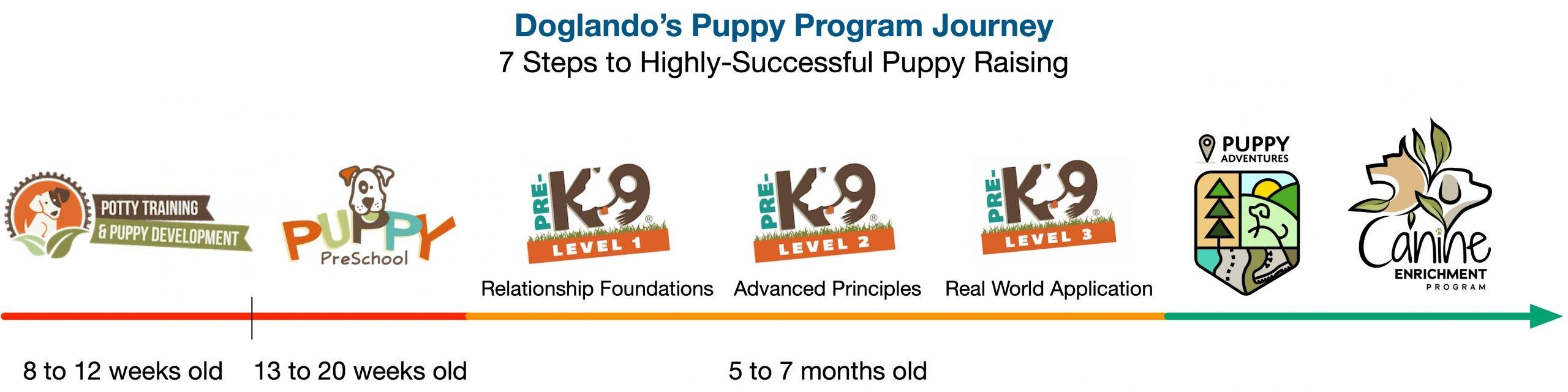 Puppy Program Journey