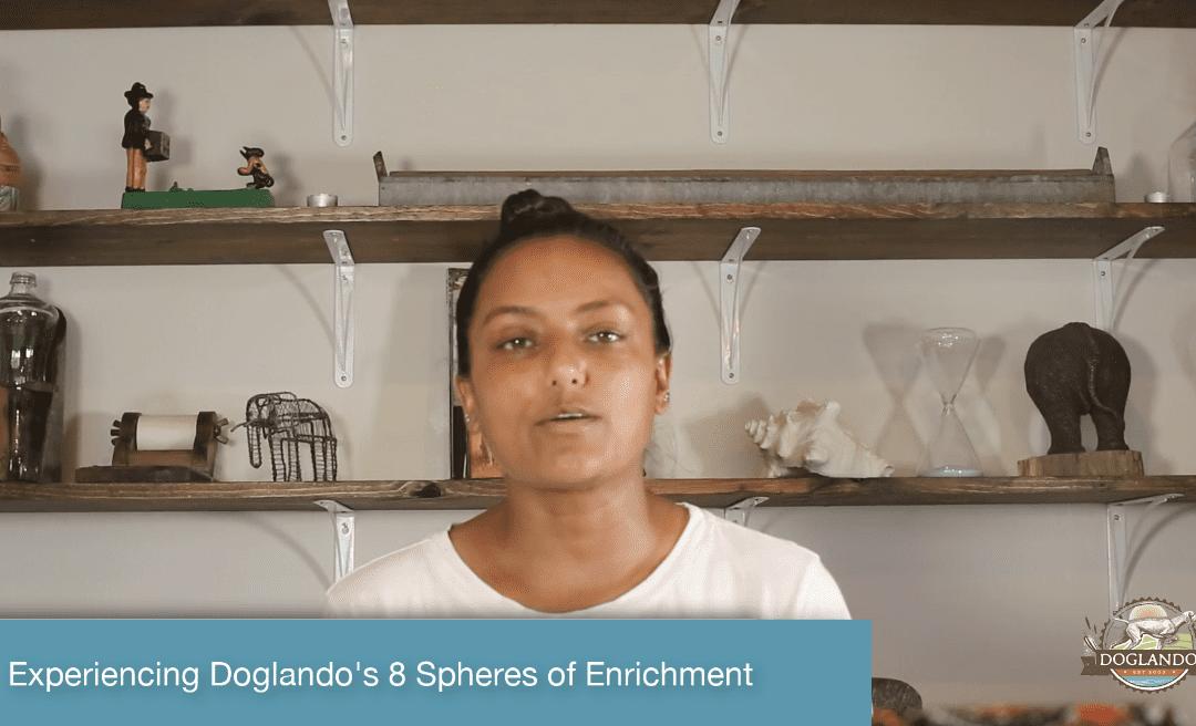 Experiencing Doglando's 8 Spheres of Enrichment